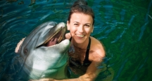 Honolulu Attractions, Dolphin Quest, Attractions on Oahu