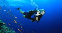 Honolulu Activities, SCUBA Diving, Oahu Things to Do
