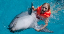 Honolulu Activities, Swim with Dolphins, Oahu Activities